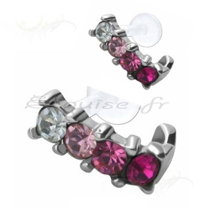 Piercing cartilage zircon griffés